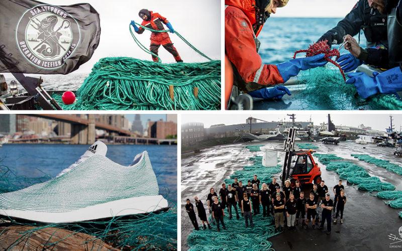 Взуття Adidas – революція спортивного одягу